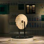 Ein Rai, Steingeld von der Insel Yap, Micronesien. Geeignet für Landgeschäfte in Micronesien – weniger um seinen Deckel an der Bar zu bezahlen… . Gesehen im smac – Staatliches Museum für Archäologie Chemnitz