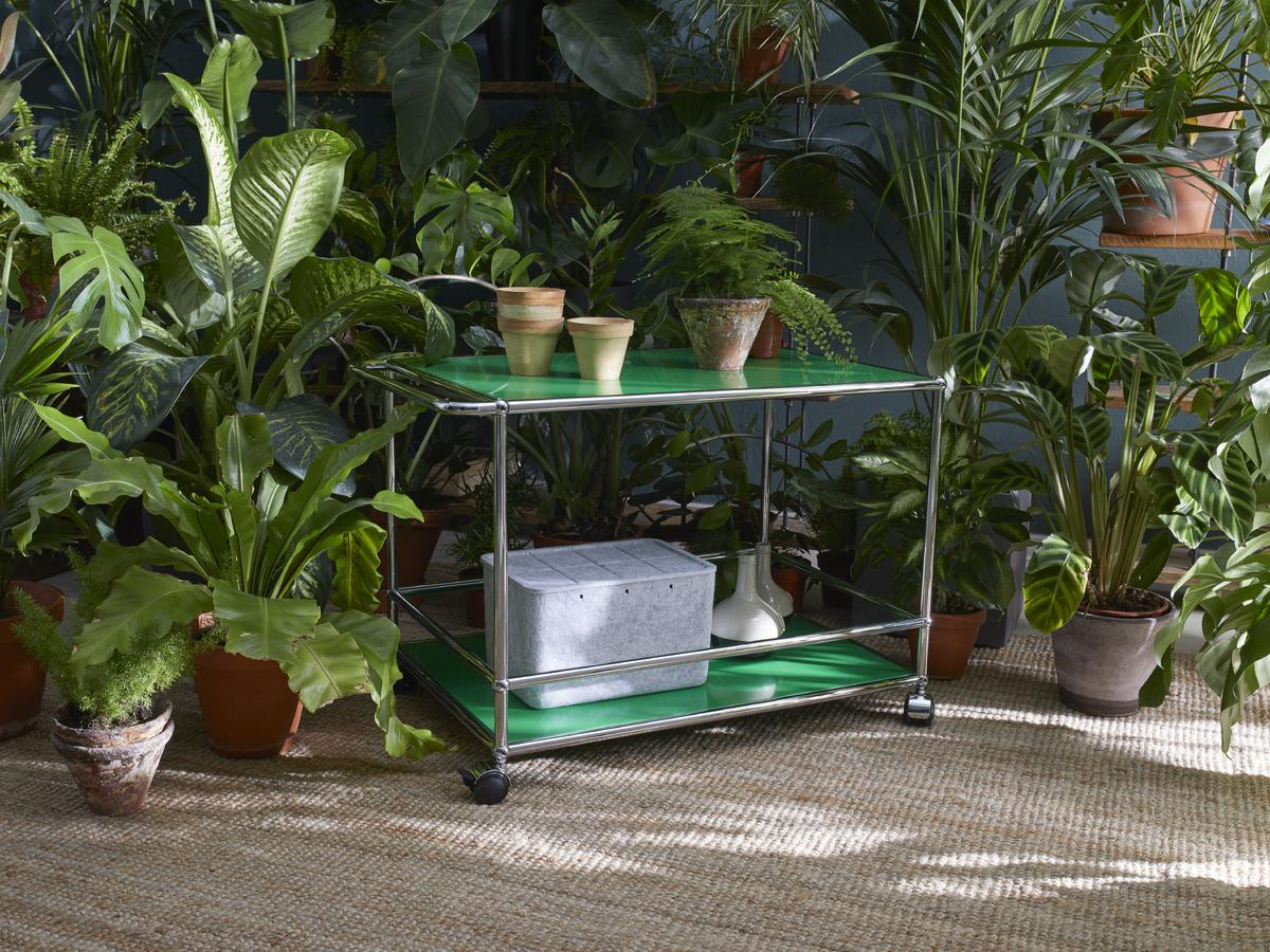 usm haller barwagen schnaps von fritz haller paul. Black Bedroom Furniture Sets. Home Design Ideas